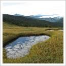 池に秋の雲が映り込んで絵画のよう(9月)