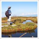 秋の白木池塘2(浮島のある池塘)(10月)