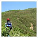 もうすぐ白木山頂(6月)