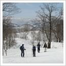 流葉から数河への尾根歩き(1月)