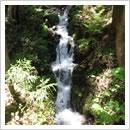 流葉山からの清水(8月)