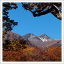 秋の大白川(10月)