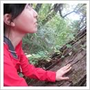 樹のパワーをもらう(8月)