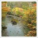 """湖面に映った景色が美しい""""甚四郎池(10月)"""