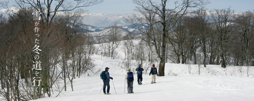 奥飛騨数河流葉県立自然公園