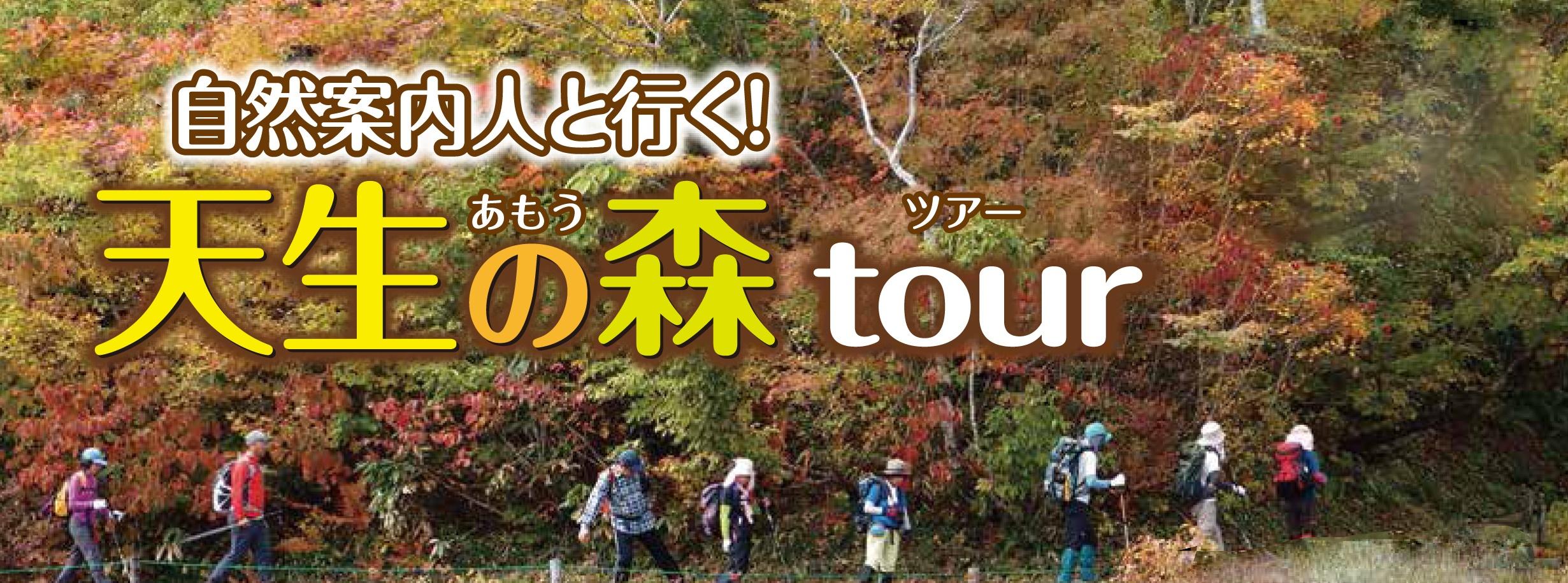 自然案内人と行く!天生の森tour